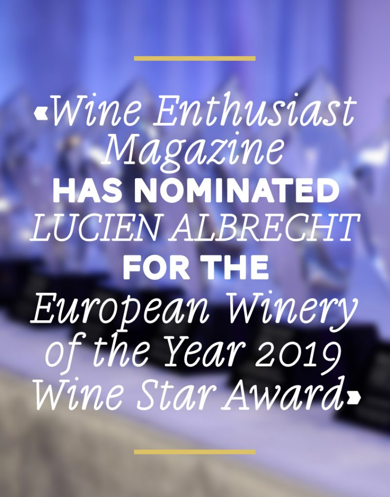 Wine Enthusiast Magazine has nominated Lucien Albrecht for the European Winery of the Year 2019 Wine Star Awards